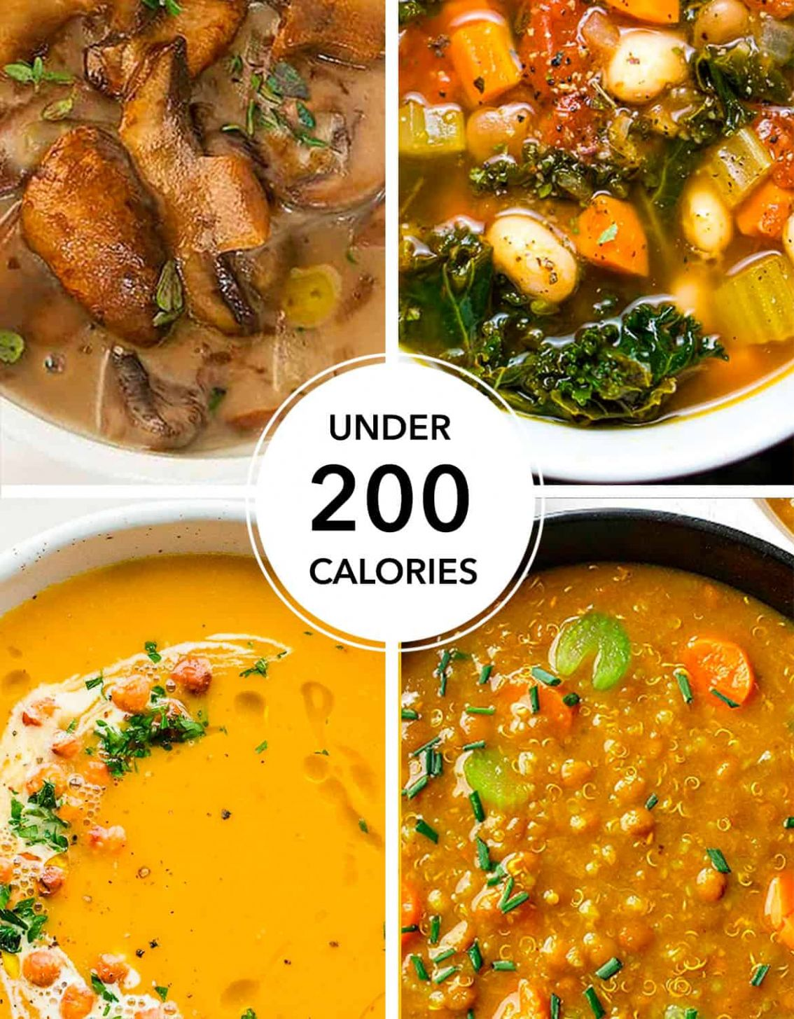 11+ HEALTHY WEIGHT LOSS SOUPS (UNDER 11 CALORIES) - The clever meal