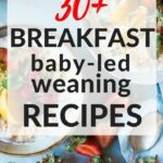 12+ Baby Led Weaning Breakfast Recipes | Baby Led Weaning ..