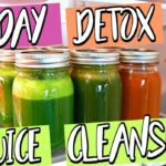 12 DAY DETOX JUICE CLEANSE! LOSE WEIGHT IN 12 DAYS! – Juice Recipes For Weight Loss Fasting