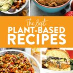 12 Extraordinary Plant Based Recipes - Fit Foodie Finds