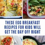 8 Quick & Easy Egg Breakfast Recipes That Taste Incredible! – Breakfast Recipes You Can Freeze