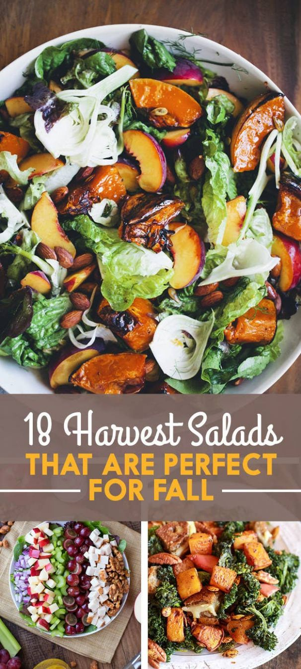 9 Fall Salads You Need In Your Life Right Now - Salad Recipes Buzzfeed