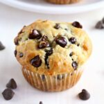 Best Ever Greek Yogurt Chocolate Chip Muffins – Recipes Chocolate Chip Muffins