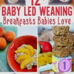 BLW Image By Maha El Sada In 12 | Baby Led Weaning Recipes, Baby ..