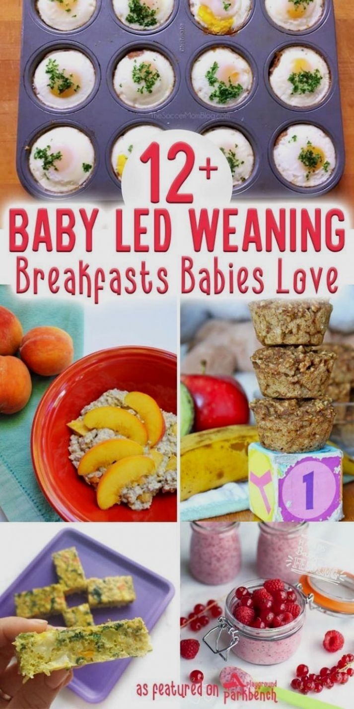 BLW image by Maha El-sada in 12 | Baby led weaning recipes, Baby ..