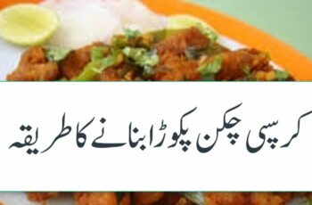 Chicken Pakora Recipe In Urdu چکن پکوڑا چکن کے پکوان | Chicken Recipes