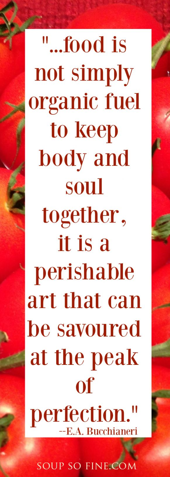 Delectable Vegetable Soup Recipes - Soup Recipes Quotes