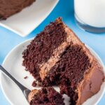 Double Chocolate Layer Cake – Recipe Chocolate Layer Cake