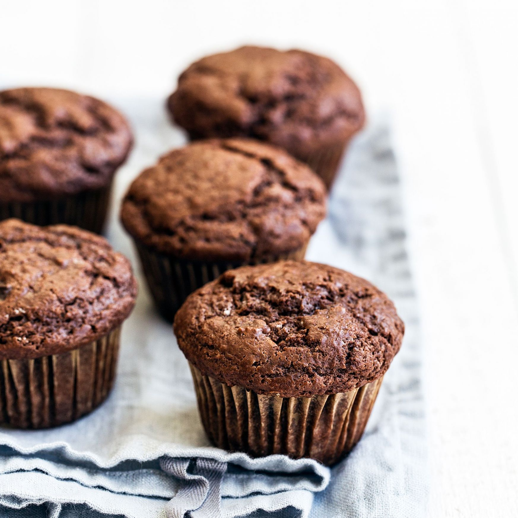 Double Chocolate Muffins - Recipes Chocolate Cupcakes