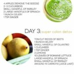 Easy Detox: Easy Detox Juice Recipes For Weight Loss – Juicer Recipes Weight Loss Plan