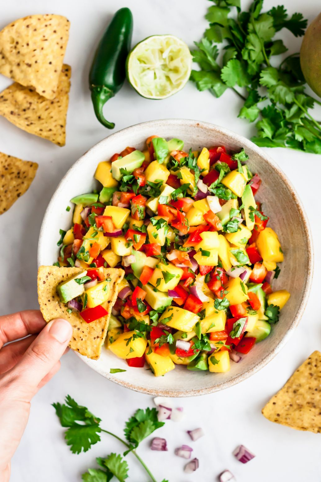 Fresh Mango Salsa Recipe | Ambitious Kitchen - Recipe Fish With Mango Salsa