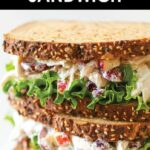 Greek Yogurt Chicken Salad Sandwich – Sandwich Recipes Low Cholesterol