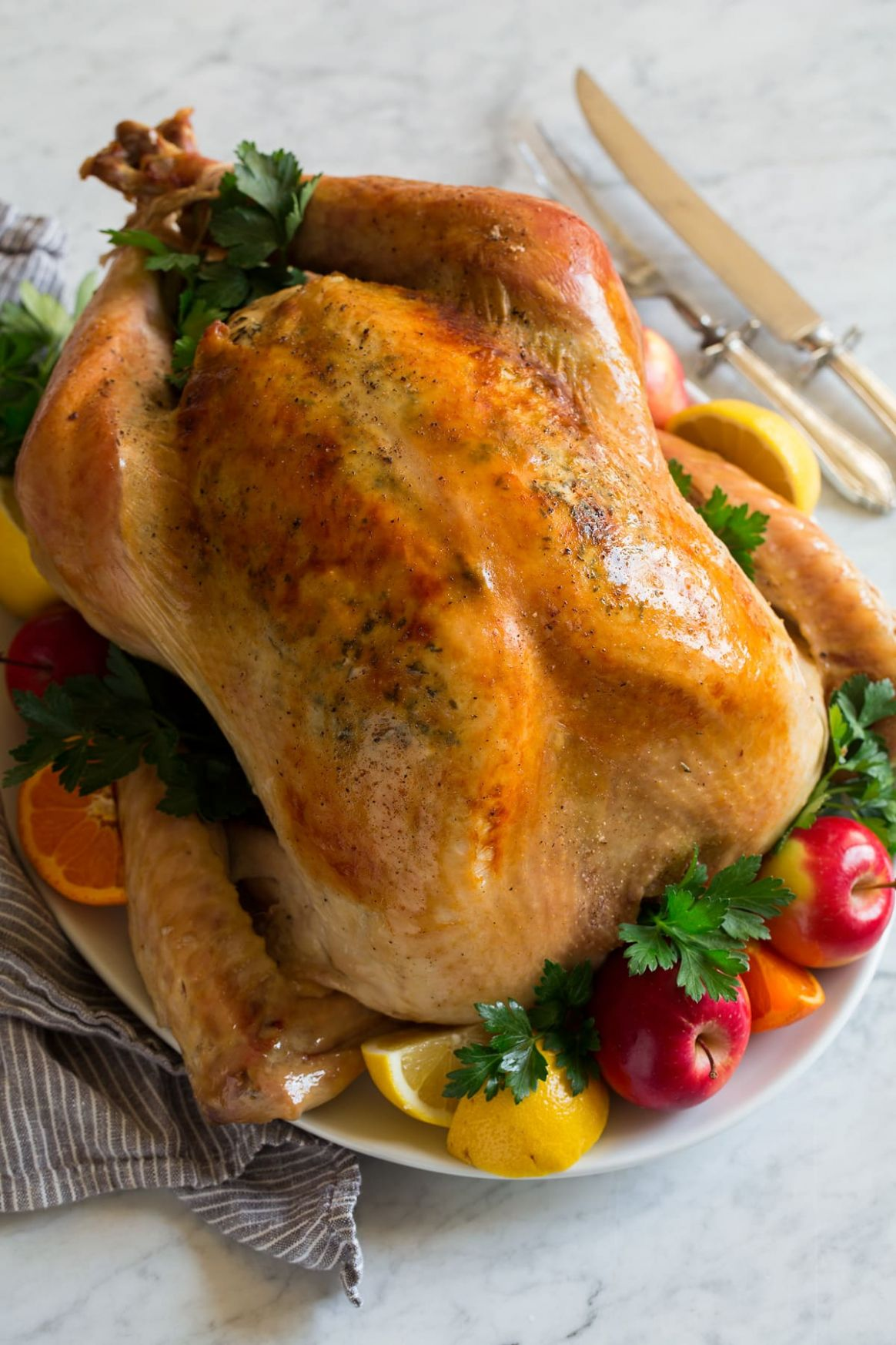 How to Cook Turkey In an Oven Bag - Recipes Cooking Turkey