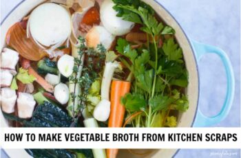 How to Make Vegetable Broth from Kitchen Scraps - Savory Lotus