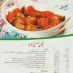 Kochrezepte Videos in Urdu Download - riskapalon