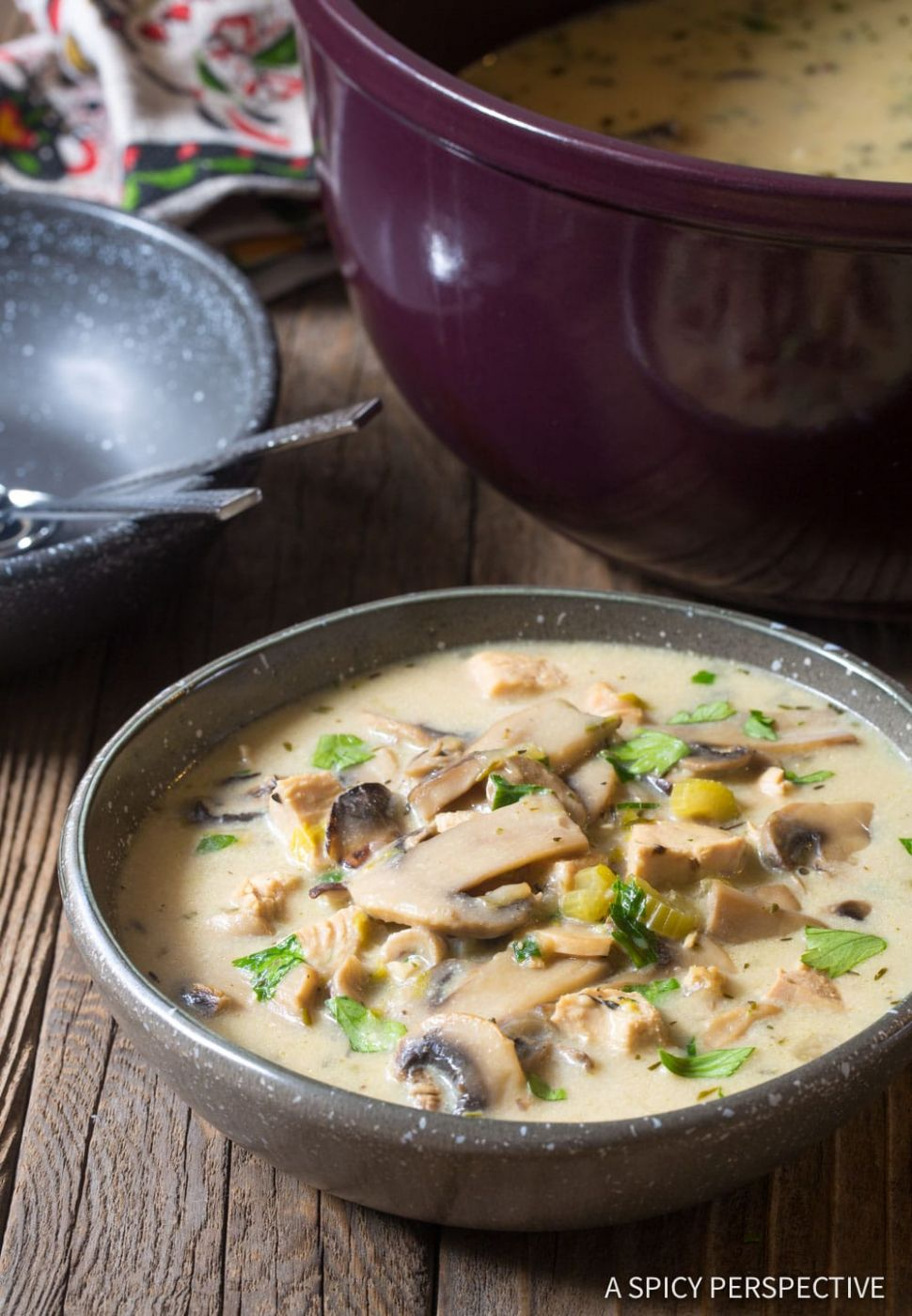Low Carb Creamy Chicken Mushroom Soup (Video) - A Spicy Perspective - Recipe Chicken Breast With Cream Of Mushroom Soup