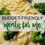 Quick And Easy Budget Friendly Dinner Recipes For One Person ..