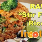 Raw Stir Fried Rice On Getting Into Raw: Cooking With Zane – Optimum 10 – Recipes With Raw Rice