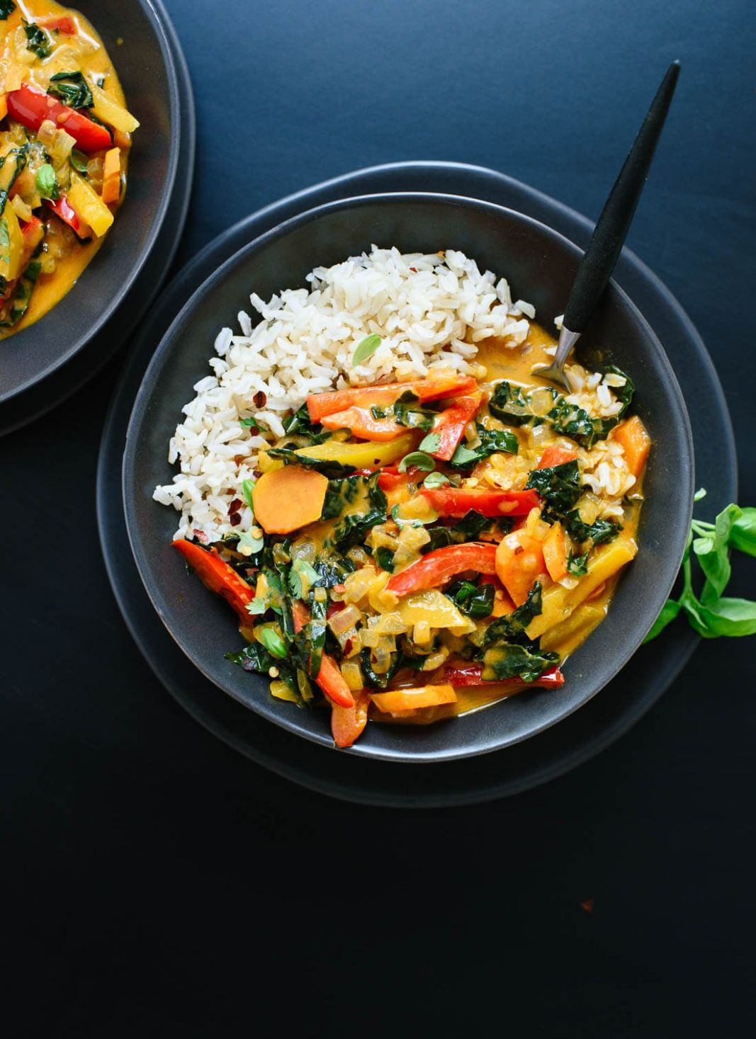 Thai Red Curry with Vegetables - Food Recipes Curry