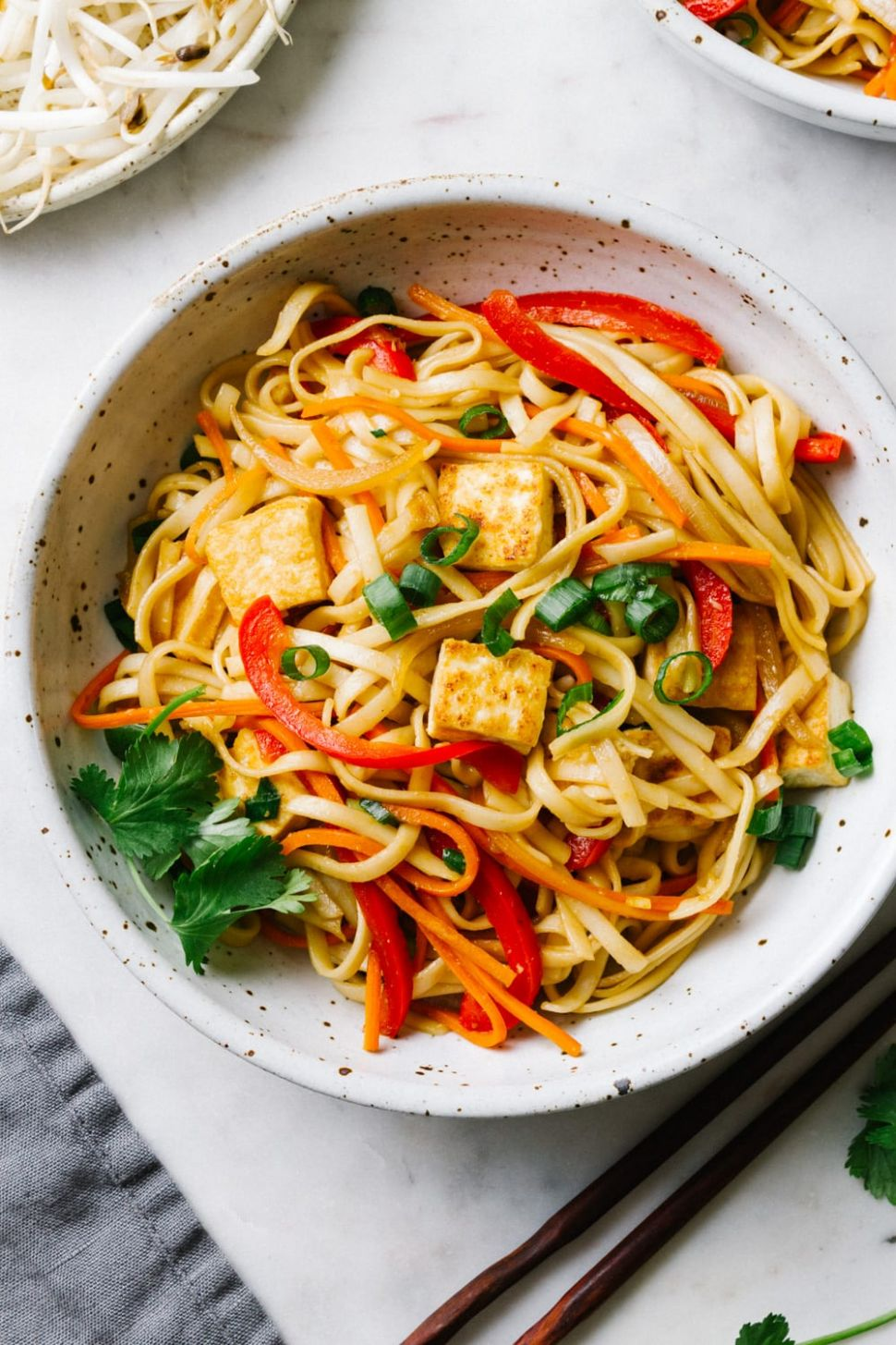 VEGETABLE LO MEIN WITH CRISPY TOFU - Recipes Vegetable Lo Mein