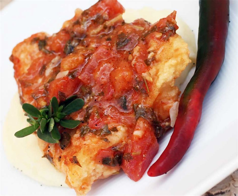 White fish fillets with herbs, tomato sauce and arak - Taste of Beirut - Recipe Fish With Tomato Sauce