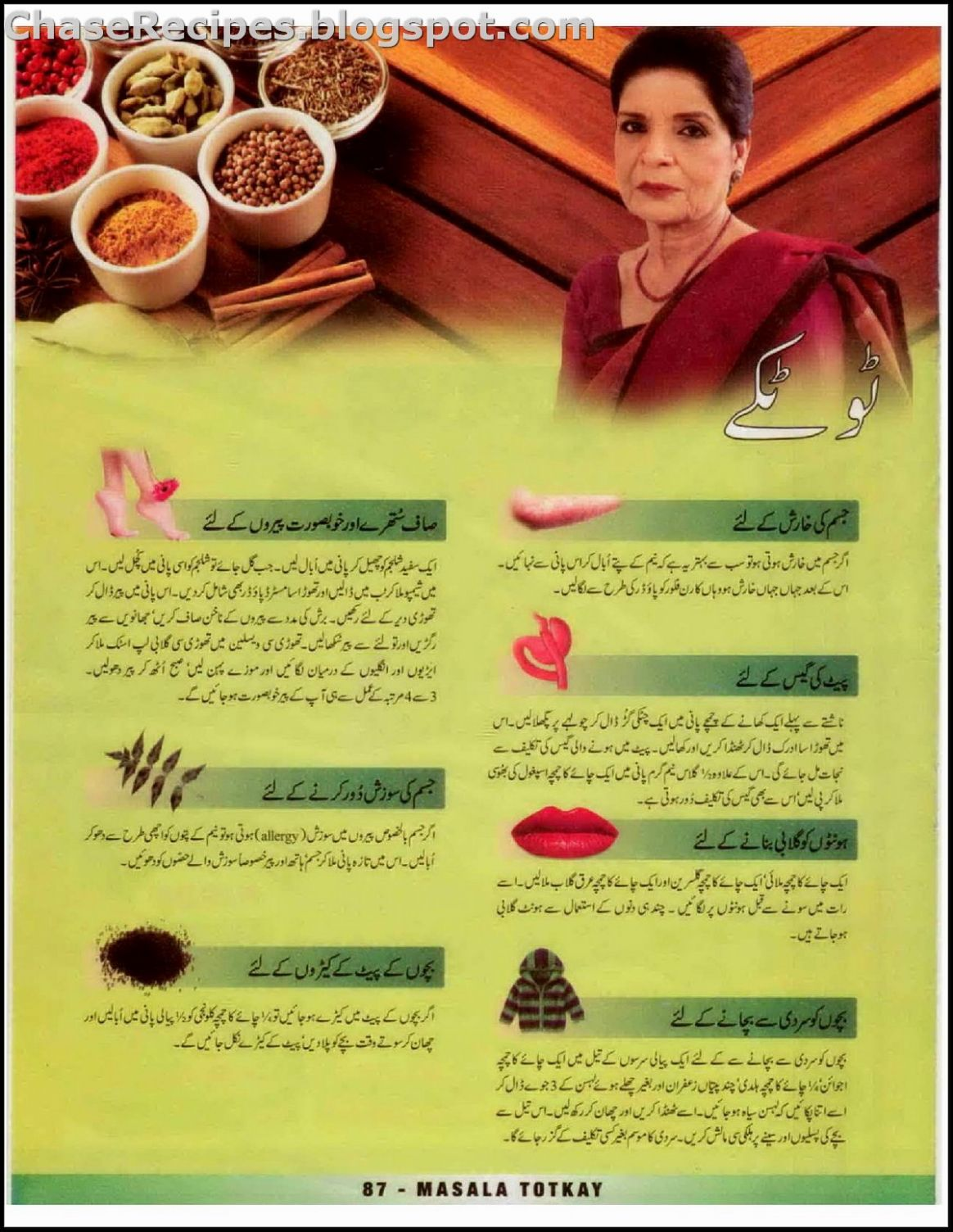 Zubaida Tariq Handi, Programs, Recipes, Tips, Totkay - Chase Recipes